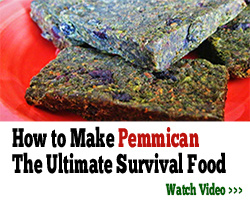 THE LOST WAYS PEMMICAN