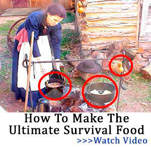 THE LOST WAYS 2 ULTIMATE SURVIVAL FOOD